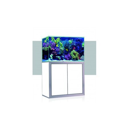 Aquascape Construction Epoxy D&D 2 la pezcera