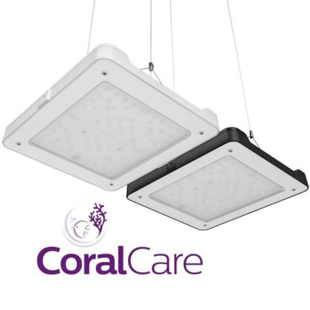 Discus Trace Seachem suplemento 250ml